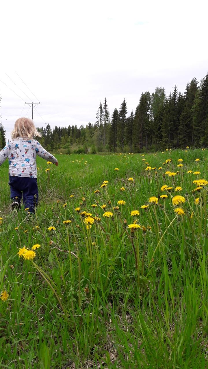 Luonnon leikkikenttä tukee taaperonkehitystä